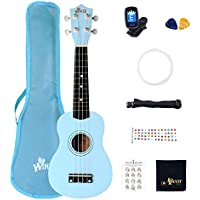 Winzz Soprano Ukulele Starter Kit For Beginners with Bag, Clip-On Tuner, Extra Strings, Strap, Plectrum, Fret Stickers, Chords Card, Polishing Cloth, Blue