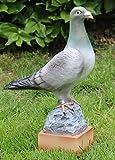 JS GartenDeko Deko Figur Taube stehend auf Sockel Vogelfigur aus Kunstharz H 36 cm x L 25 cm