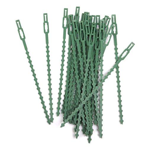 shangmu 30pcs plastica riutilizzabili cavo zip wire tie support pomodori, peperoni, vite piante e fiori da coltivare verticale