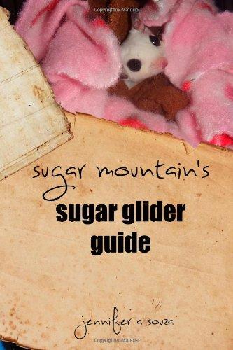 Sugar Mountain's Sugar Glider Guide - Mountain Glider
