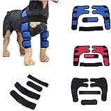 Tofree Hund Ellbogenprotektor Hinten Bein Sprunggelenk Wrap Schützen Extra stützende Hund Hunde
