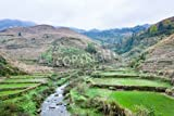 "Holz-Bild 50 x 30 cm: ""travel to China - water stream between terraced fields of Dazhai village in area of Longsheng Rice Terraces (Dragon s Backbone t"", Bild auf Holz"