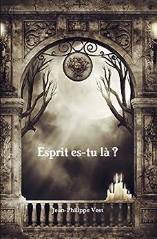 Esprit es-tu là ? (French Edition) by [Vest, Jean-Philippe]