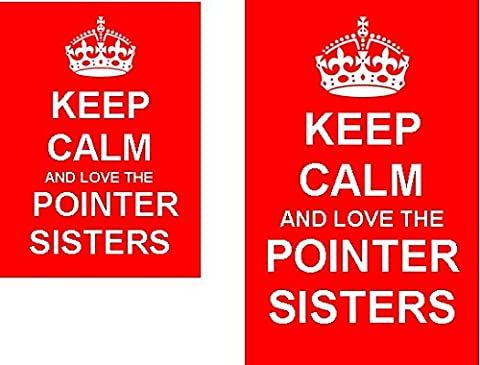 Keep Calm And Love The Pointer Sisters Novelty Keyring and Fridge Magnet Set