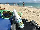 Panda Cleaner® Spar Set occhiali Detergente 50ML pompa bottiglia + 250ML Bottiglia di ricarica   senza alcol   antibeschlag   Streifenfrei   Anche per schermi, monitor, visiere e altro.