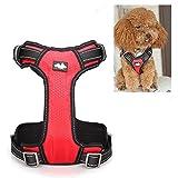 LaDicha Nylon Hundegeschirr Kette Vest Typ Mesh Pet Leash Atmungsaktiv Einstellbar S M L XL - L - Rot
