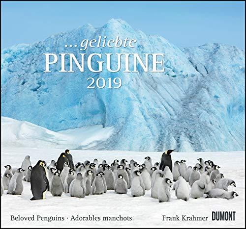 ... geliebte Pinguine 2019 - DuMont Wandkalender - mit den wichtigsten Feiertagen - Format 38,0 x 35,5 cm