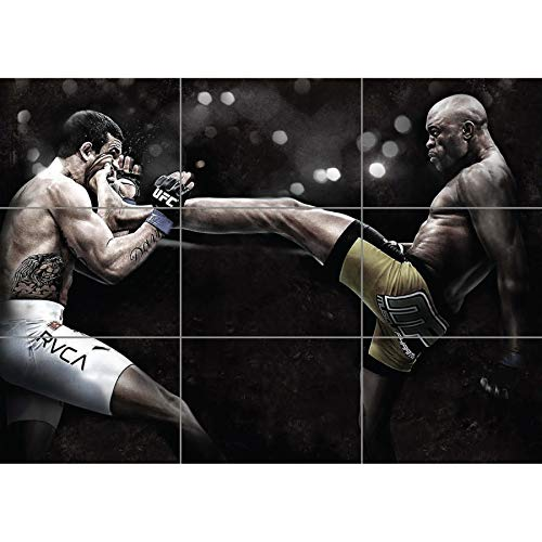 ANDERSON DA SILVA THE SPIDER MIXED MARTIAL ARTS UFC GIANT POSTER PLAKAT DRUCK PRINT NC6021 - Giant Spider
