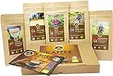 Kaffee Globetrotter - Bio-Box Ganze Bohne - für Kaffee-voll-automat, Kaffeemühle, Handmühle, Espressovollautomat - 5 Mal 100g Raritäten Spitzenkaffee - Fünf Kaffeesorten Aus Biologischem Anbau - Geschenk Set - Länder Kaffee aus aller Welt - Kaffeebohnen im Geschenkkarton , das perfekte Geschenk