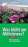 Was blüht am Mittelmeer?: 750 Arten Mittelmeerpflanzen nach Farbe bestimmen (Kosmos-Naturführer) - Ingrid Schönfelder