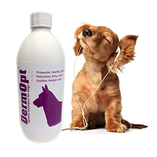 6-in-1-VET-CREATED-Itchy-Dog-Shampoo-Conditioner-Moisturiser-Detangle-PLUS-Eliminates-Stinky-Smelly-Germs-Soothes-Sensitive-Itching-Skin-Allergies-SLS-Paraben-Scent-Free-by-DermOpt-500ml