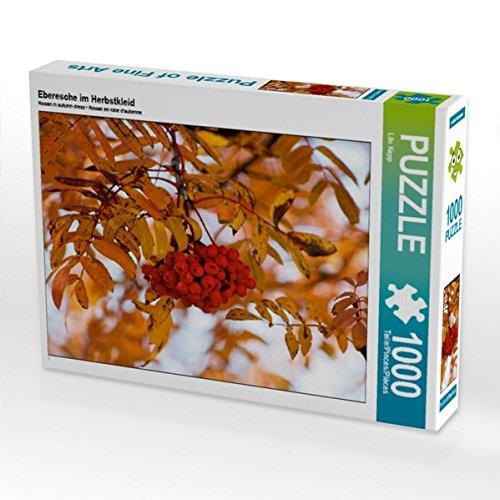 Eberesche im Herbstkleid 1000 Teile Puzzle quer (CALVENDO Natur)