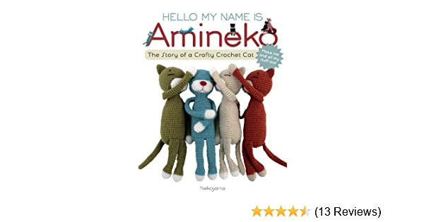 Hello My Name Is Amineko Amazonde Nekoyama Fremdsprachige Bücher