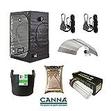 Grow Tent Kit Green Box Canna Coco 125w Dual CFL Reflector 80x80x180cm