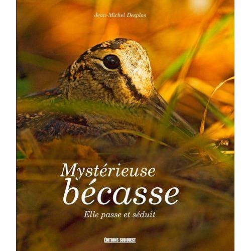 Mystérieuse bécasse : Elle passe et séduit...