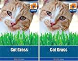 De Ree 2 Packets of CAT GRASS Household SEEDS - Approx 75 Seeds per pack