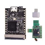 Aibecy Lichee Pi NanoFW (16M) Cross-Border-Core-Board ARM 926EJS 32 MB DDR-Entwicklungsboard Mini-PC mit WLAN-Modul
