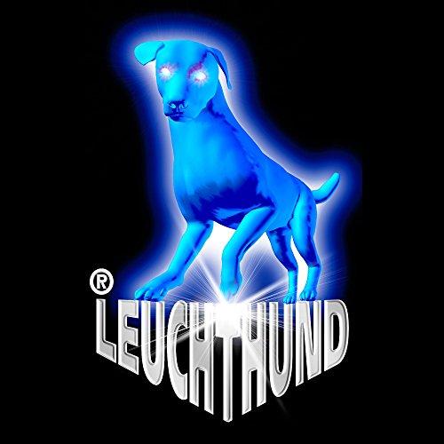 7 Stück Hunde Leuchtanhänger Leuchthalsband Led Hundehalsband LH6 Blinkie von Leuchthund® Led Anhänger (gemischt je 1 (mit disko 1)) - 2