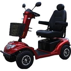 Alpenlift MOBI Race - Altersgerechtes Behindertenfahrzeug für Senioren oder Personen mit einer Gehbehinderung