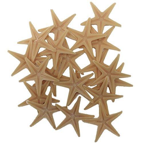 FUNSHOWCASE Lot 20 étoile de mer étoile de mer pour Aquarium Terrarium Fée Jardin Miniature Jardin Maison de poupée pour gâteau Plastique de Scrapbooking Décoration