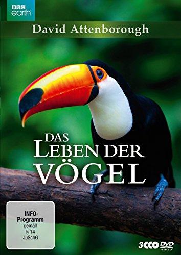 Preisvergleich Produktbild David Attenborough: Das Leben der Vögel - Die komplette Serie [3 DVDs]