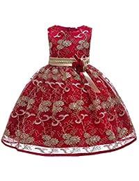 97e556437956 YFCH Bambina Ricamo Fiore Vestiti da Cerimonia Eleganti Senza Maniche  Matrimonio Partito Comunione Abiti Principesse Bimba Abito 3-9…