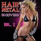 Hair Metal In Covers Vol. 2