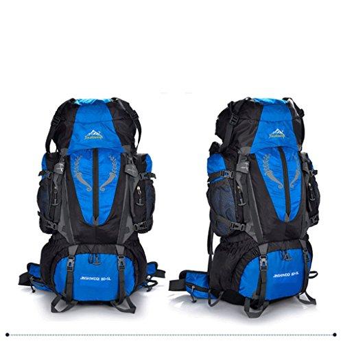 sacchetto di alpinismo professionale di grande capacità 80L85L pacchetto esterno di viaggio zaino campeggio trekking tenda ALICE cielo blu