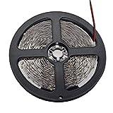 JERFER Corda LED per Illuminazione Esterna A Nastro Flessibile 300Led Dc12V