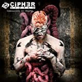 Songtexte von Cipher System - Communicate the Storms