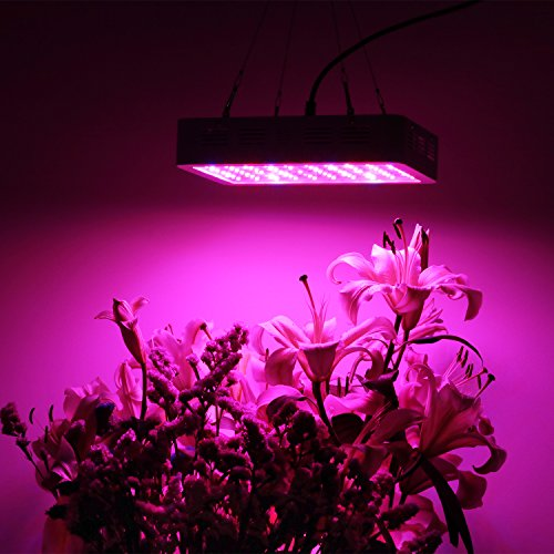 pflanzenlampe-led-grow.info