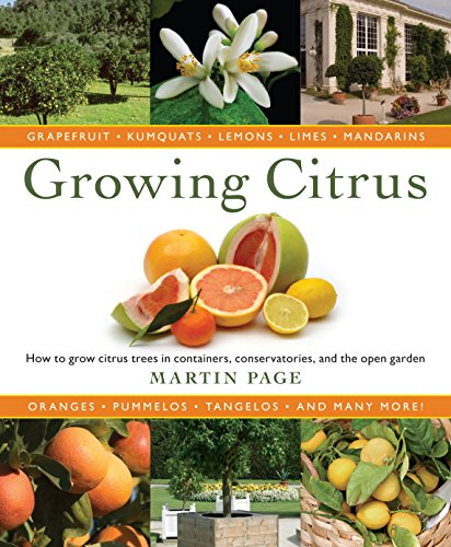 growing-citrus-the-essential-gardeners-guide