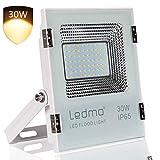 LEDMO Foco LED 30W exterior 2400LM Ultra alto brillo focos led exterior SMD2835,2700K foco led blanco cálido IP65 Impermeable foco exterior