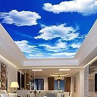 suchergebnis auf f r tapete himmel decke wandtattoos wandbilder malerbedarf. Black Bedroom Furniture Sets. Home Design Ideas