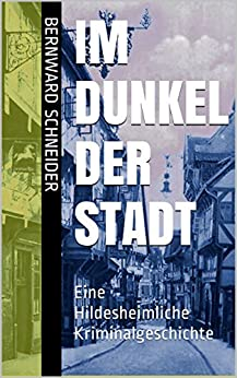 Im Dunkel der Stadt: Eine Hildesheimliche Kriminalgeschichte