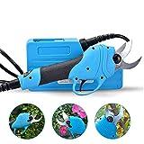 IDABAY Ébranchoir Électrique Coupe-Branches Portable Ciseaux d'Élagage à Mains pour Pampres Branches 25-30mm
