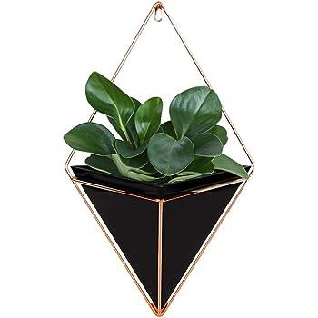 lot de 2 supports de plante d 39 int rieur lanmu support mural d cor de bureau pour plantes. Black Bedroom Furniture Sets. Home Design Ideas