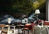 Papier peint mural - Forêt Courant Rapides - Thème Forêt et arbres - XL - 368cm x 254cm (LxH) - 4 Parts - Imprimé sur 130g/m2 papier intissé EasyInstall - 1X-1334954V8