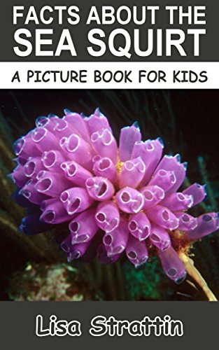 Facts About the Sea Squirt (A Picture Book For Kids 170) (English Edition) (Life Vest Marine)