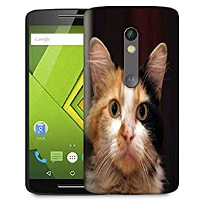 Snoogg Cute Kitty Designer Protective Phone Back Case Cover For Moto G 3rd Generation