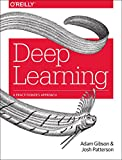 Deep Learning: The Definitive Guide: A Practitioner's Approach
