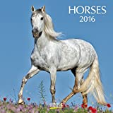Horses 2016: Broschürenkalender mit Ferienterminen