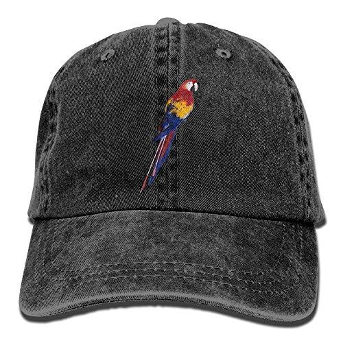 rrot Colorful Adjustable Vintage Washed Dad Hat Baseball Cap for Adult Design4 ()