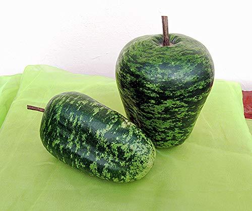 Bobby-Seeds Kürbissamen Apple, Speckled Portion