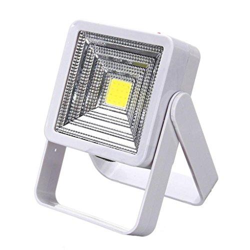 HCFKJ 15W Portable Solarbetriebene LED wiederaufladbare Glühbirne Licht Outdoor Camping Yard Lampe (WEIB) (Solarbetriebene Camping-ausrüstung)