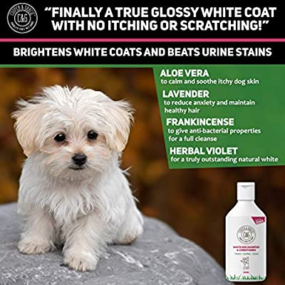 White Dog Shampoo Conditioner with Herbal Violet for Urine Stain Removal and Itchy Sensitive Skin - Medicated Puppy Safe - 500ml by Cooper and Gracie