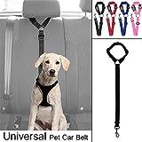 Tierbedarf für Katze und Hund, Pet Safety Leine Einstellbare Hundegurt Hundegeschirr Pet Auto Fahrzeug Sicherheitsgurt (Color : Black)