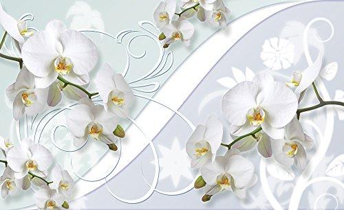 foto-tappezzeria-fotografica-poster-immagini-fiori-orchidea-decorazioni-1206-sfondo-blu-carta-254-cm