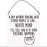 A Day Without Dealing With Stupid People Is Like Never Mind Funny Rude Cat SMALL Wall Metal PLAQUE SIGN Retro10x10cm