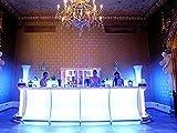 Leuchtbar 600 inkl Ecken Rückwand Rückbuffet weiß gepolstert gerade zzgl LED Leuchtmittel Transportwagen Kühlschrank